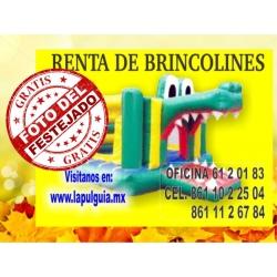 Brincolin de Cocodrilo (Renta)